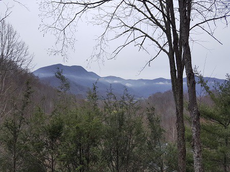 Mountain View, Owl's Perch Vacation Rental
