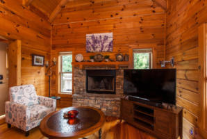 50 Eindon Cir Waynesville NC-large-013-013-Living Room-1492x1000-72dpi