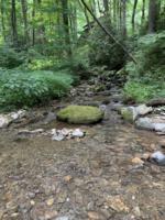Creek Crossing Retreat-groundsandcreek (7)