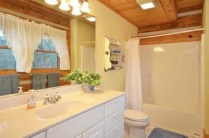 Master bathroom with shower-tub combo