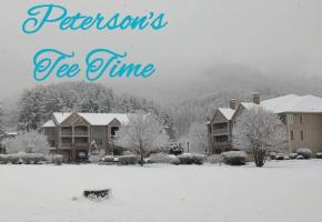 Peterson's in Winter