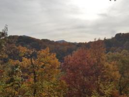 Serenity Mountain Retreat, Fall Mountain View