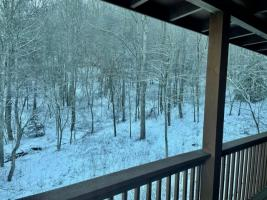 Back Deck  Winter View of Woods