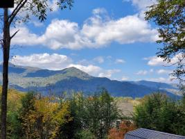 Wakulla View (3)
